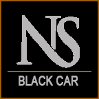 Nashville Sedans Logo
